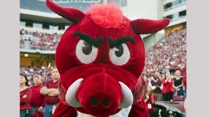 The Arkansas Razorback mascot Big Red poses for a photo during an NCAA college football game against Auburn on Saturday, Oct. 8, 2011, in Fayetteville, Ark. (AP Photo/Beth Hall)