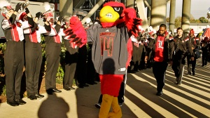 Louie, the Cardinal Bird mascot, leads the University of Louisville football team into the stadium before the start of their NCAA college football game against second-ranked Florida State in Louisville, Ky., Thursday, Oct. 30, 2014. (AP Photo/Garry Jones)