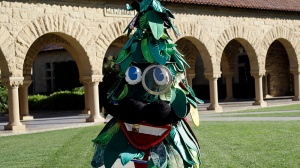 In this Wednesday, Oct. 19, 2016 photo, Stanford University student Sam Weyen, who portrays the Stanford Tree, the school's mascot, poses for a portrait on the university's campus in Stanford, Calif. (AP Photo/Marcio Jose Sanchez)
